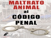 No Al Maltrato Animal!