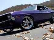 Dodge Challenger 1970 [Un Fierrazo Muscle Car]