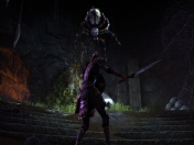 The Elder Scrolls Online | PVP