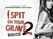 I spit on your grave 2 (2013)(Critica)