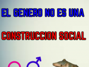 El genero no es una construccion social(video)