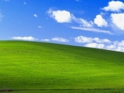 Windows XP vuelve a crecer, y de manera considerable