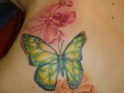 Top 50 Best Butterfly Tattoo Designs And Ideas